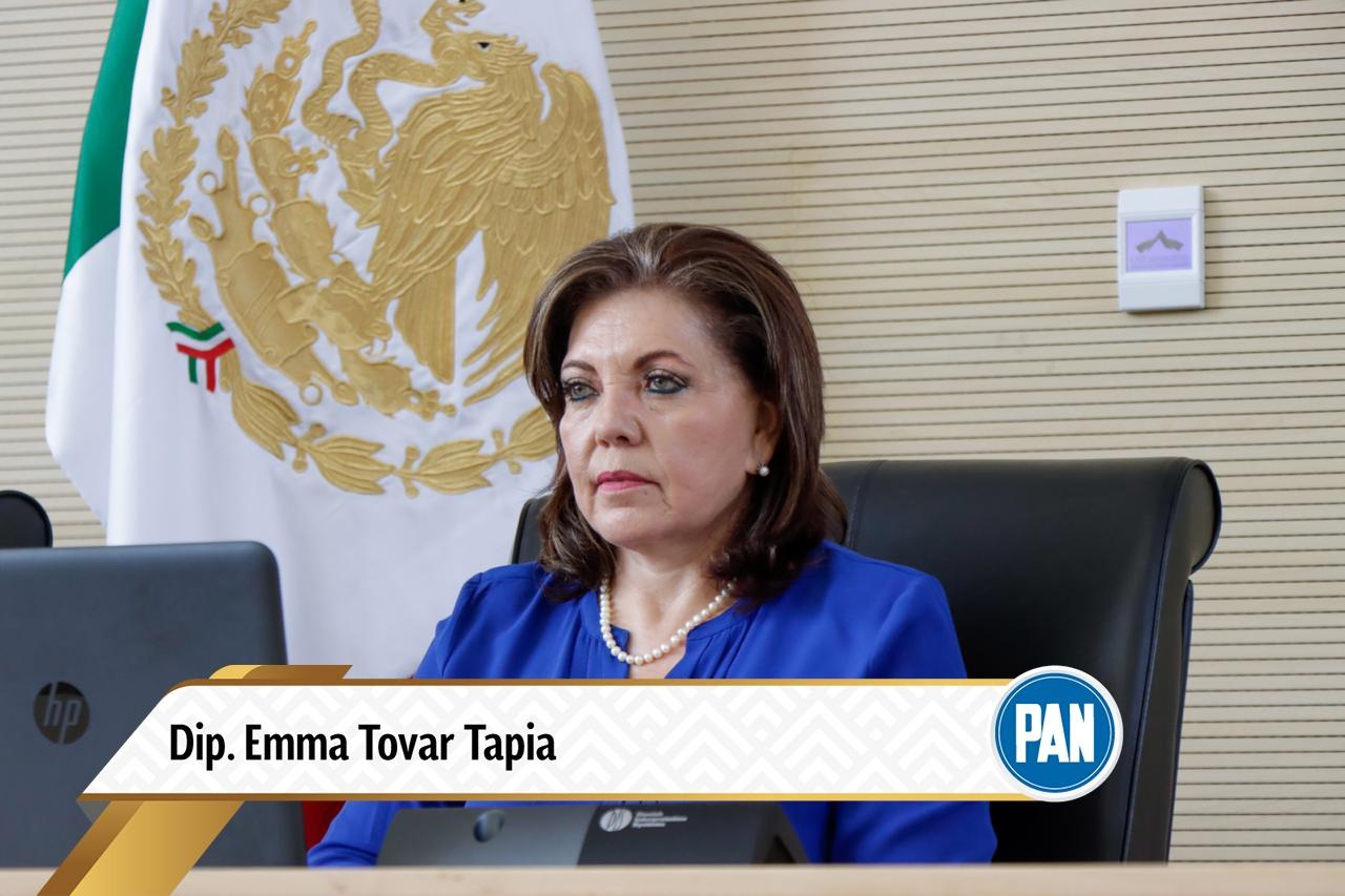 Presenta PAN iniciativa para fortalecer competencia de la SDES en Mejora Regulatoria